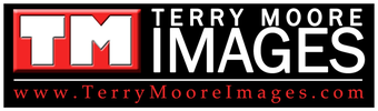 Terry Moore Images